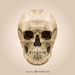 Cranio poligonale vettore