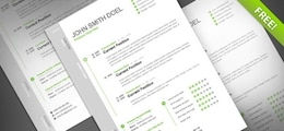 cv curriculum gratis template psd
