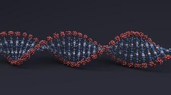 Disegno a spirale del DNA