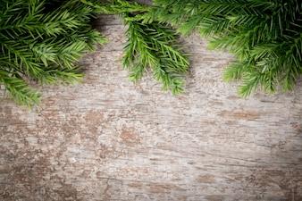Filiali arborvitae, rami di ginepro su sfondo di Natale di legno