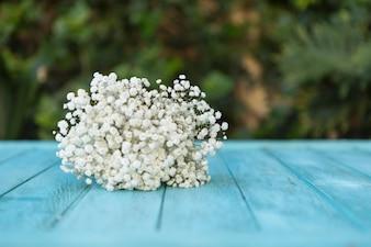 Fiori bianchi graziosi sul tavolo in legno blu