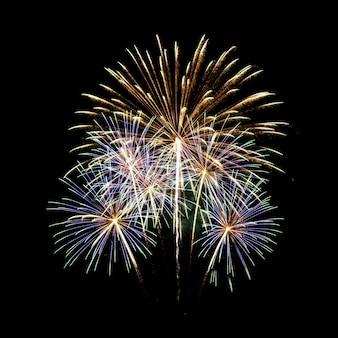Fuochi d'artificio nello sfondo del cielo scuro
