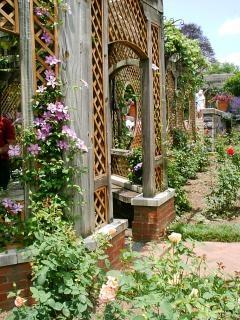 Arbusto foto e vettori gratis for Piccoli giardini fioriti