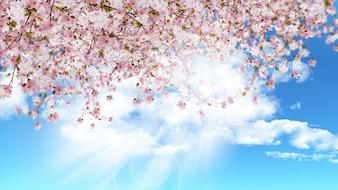 Il rendering 3D di fiori di ciliegio su un cielo blu pieno di sole