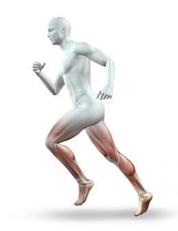 Il rendering 3D di una figura maschile con lo scheletro in esecuzione