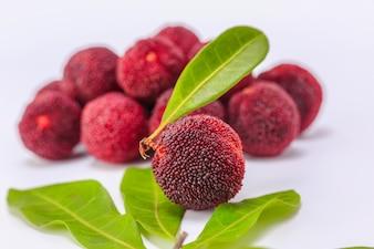 Ingrediente sano fresco edulis natura