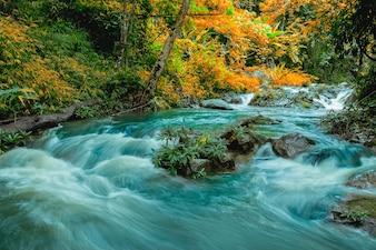 La fotografia di paesaggio, Mae Hat Waterfall, bella cascata nella foresta pluviale, provincia di Chiang Mai, Thailandia