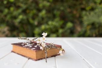 Libro dell'annata con il ramoscello decorativo