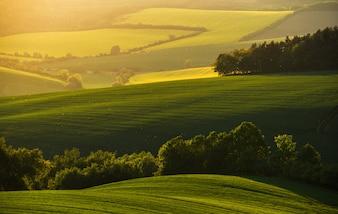 Magico tramonto nella fattoria del sud della Moravia