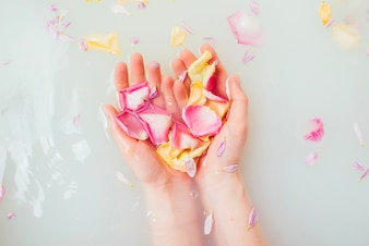 Mani femminili in acqua che detengono petali