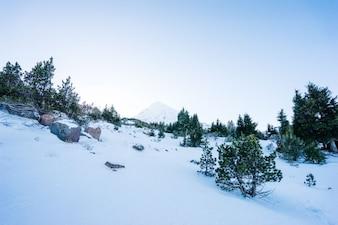 Nevoso paesaggio montano
