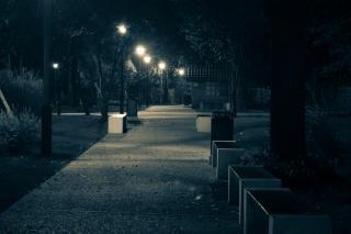 notte nel parco