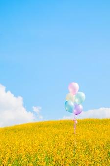 Palloncino colorato su campi fioriti gialli con sfondo cielo blu, effetto vintage