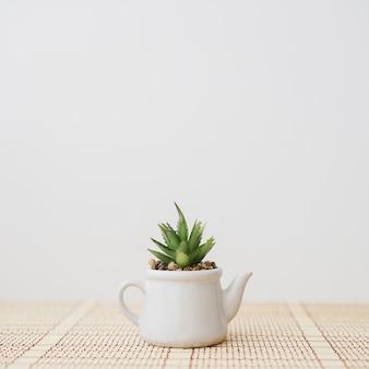 Primo piano del vaso di fiori a forma di teiera