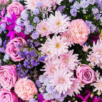 Rosa e fiori viola