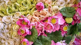 Rose e Lotus in tessuto