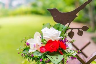 Stelo foto e vettori gratis for Nuovo stelo orchidea