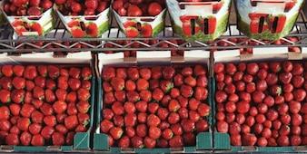 Scatole Strawberry