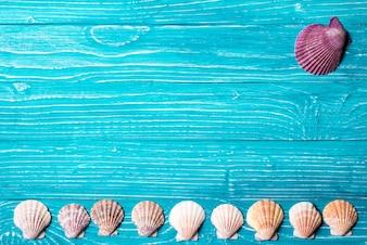 Seashells su sfondo blu di legno