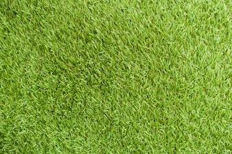 Sfondo di copertura fresca bella erba di stadio