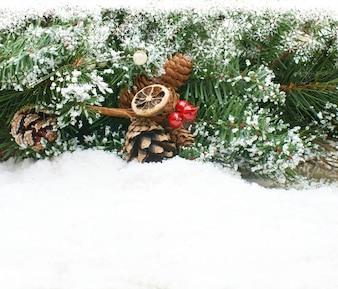 Sfondo di Natale con ramo di un albero immerso nella neve