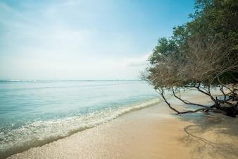 Spiaggia indonesiana