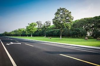 Strada di campagna estiva