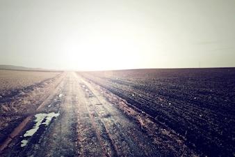 Strada di campagna nei colori freddi dell'annata.