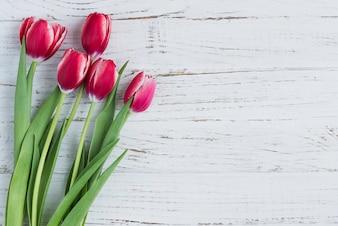 Superficie di legno bianco con tulipani per la festa della mamma