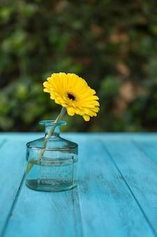Tavolo in legno con vaso di vetro e margherita gialla