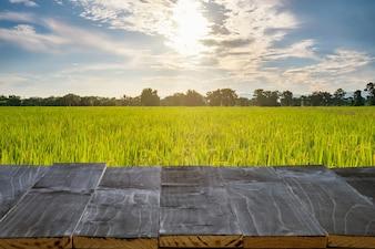Tavolo in legno per il montaggio del prodotto e display con luce solare del campo di riso,