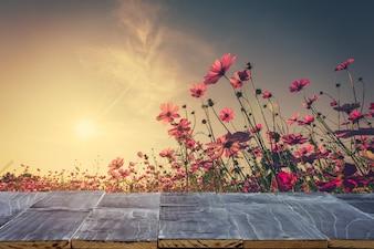 Tavolo vuoto in legno per il montage del display del prodotto e il fiore del cosmo e la luce del sole in giardino.