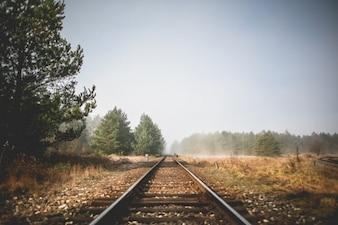 Treno rotaie prospettiva