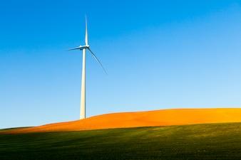Turbina eolica in un campo