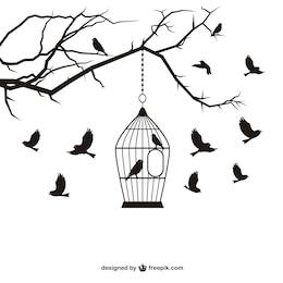 Uccelli e gabbia vettore