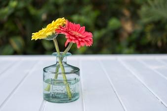Vaso di vetro con due fiori