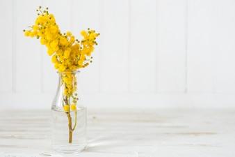 Vaso di vetro con fiori gialli graziosi