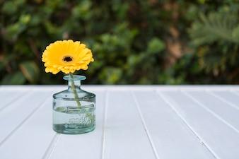 Vaso di vetro con la margherita gialla