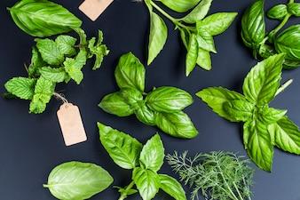 Vista dall'alto di diverse erbe aromatiche