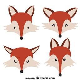 Volti Fox
