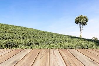Vuoto pavimento in legno sul campo di tè sfondo