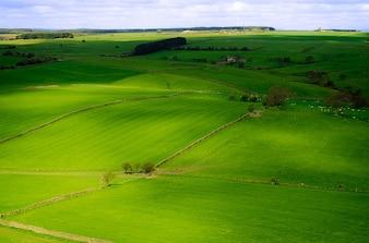 Yorkshire England stagione primaverile paesaggio nord