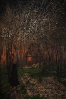 3D rendem de uma figura fêmea que anda através de uma floresta nevoenta a um castelo