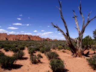 nacional erosão parque EUA utah arcos Moabe