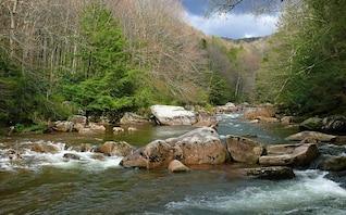 rochas paisagem plantas da natureza borda corredeiras do rio