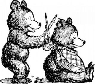 urso recebe corte de cabelo