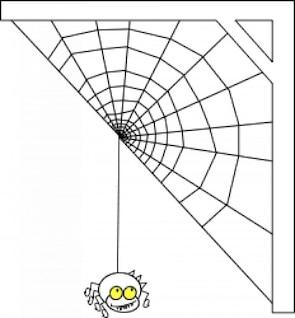 Ragno com uma meia na web