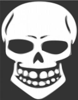 Crânio de raios-x