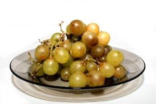 cluster de vinhas velhas, podres