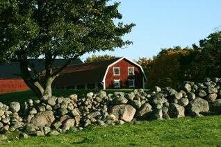 natureza agrícola, vermelho
